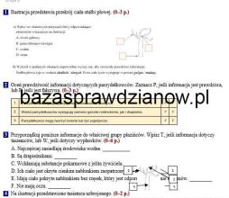 puls_zycia_6_screen1