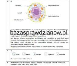 puls_zycia_6_screen3